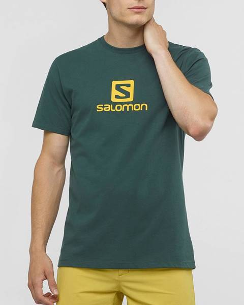Zelené tričko Salomon